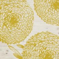 Golden Dahlias I Framed Print