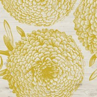 Golden Dahlias II Fine-Art Print