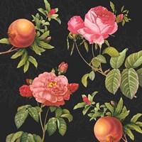 Pomegranates and Roses I Fine-Art Print