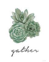Gather - Cactus Fine-Art Print
