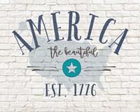 America Brick Fine-Art Print