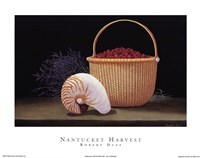 Nantucket Harvest Fine-Art Print