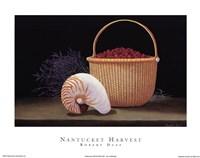Nantucket Harvest Framed Print