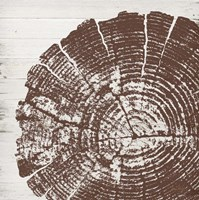 Tree Rings III Framed Print
