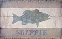 Snapper Fine-Art Print