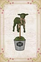 Topiary Lamb Fine-Art Print