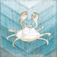 Coastal Crab Fine-Art Print