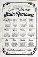 Stain Removal Guide Fine-Art Print
