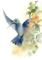 Flying Around I Fine-Art Print
