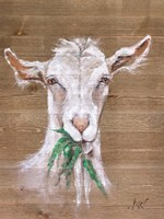 Goat Fine-Art Print