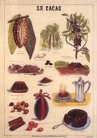 Le Cacao Fine-Art Print