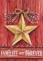 Gold Barn Star Families Are Forever Fine-Art Print