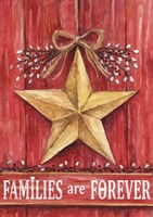 Gold Barn Star Families Are Forever Fine-Art Print