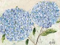 Blue Hydrangeas I Fine-Art Print