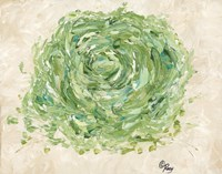 Succulent No. 2 Fine-Art Print