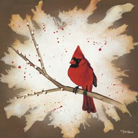 Weathered Friends - Cardinal Fine-Art Print