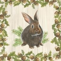Woodland Critter IV Fine-Art Print