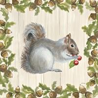 Woodland Critter III Fine-Art Print