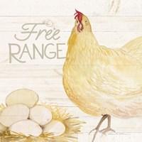 Life on the Farm Chicken IV Fine-Art Print
