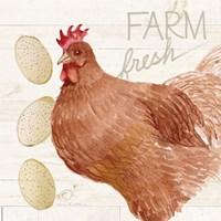Life on the Farm Chicken II Fine-Art Print