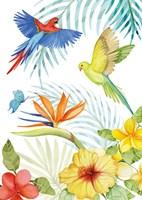 Treasures of the Tropics II Fine-Art Print