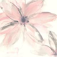Blush Clematis II Fine-Art Print