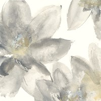Gray and Silver Flowers I Fine-Art Print