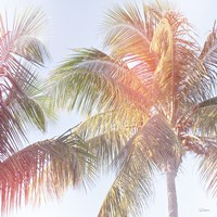 Dream Palm III Fine-Art Print