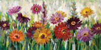 Jewel Daisy Gerbera Fine-Art Print
