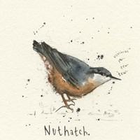 Nuthatch Fine-Art Print