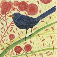 Blackbird 2 Fine-Art Print