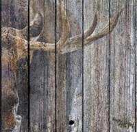 The Moose Fine-Art Print