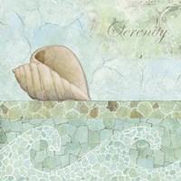 Spa Shells I Fine-Art Print