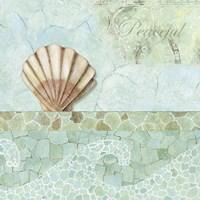 Spa Shells III Fine-Art Print