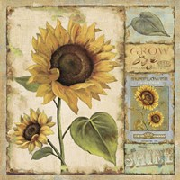 Sunny Day II Fine-Art Print