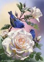 Birds of happiness Fine-Art Print