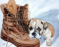 Boots Bulldog Fine-Art Print