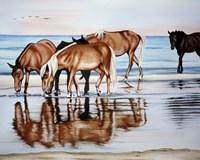 Horses On Beach Fine-Art Print