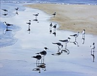 Many Birds Fine-Art Print
