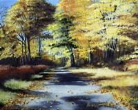 Fall's Path Fine-Art Print
