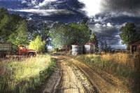 Farm Road Fine-Art Print