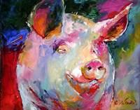 Pig 1 Fine-Art Print