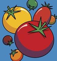 Various Tomatoes On Blue Fine-Art Print