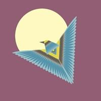 The Hawk Fine-Art Print