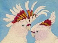 Major Mitchell's Cockatoos Fine-Art Print