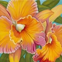 Orchid Series 2 Fine-Art Print