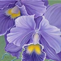 Orchid Series 3 Fine-Art Print