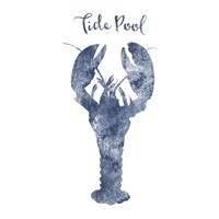 Lobster Tide Pool Fine-Art Print