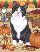 Harvest Cat Fine-Art Print