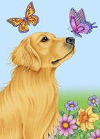 Butterfly And Dog Fine-Art Print